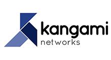 logo_networks_v2
